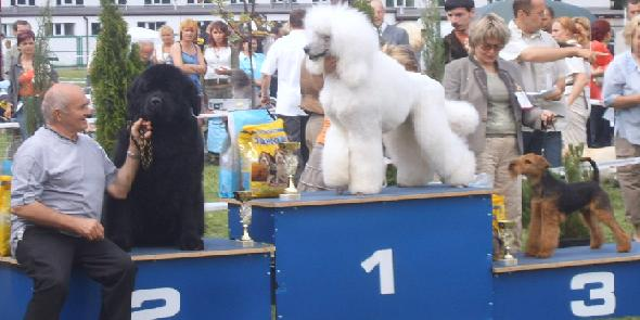 Ustron National Show 2006
